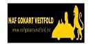 NAF Gokart Vestfold NAF
